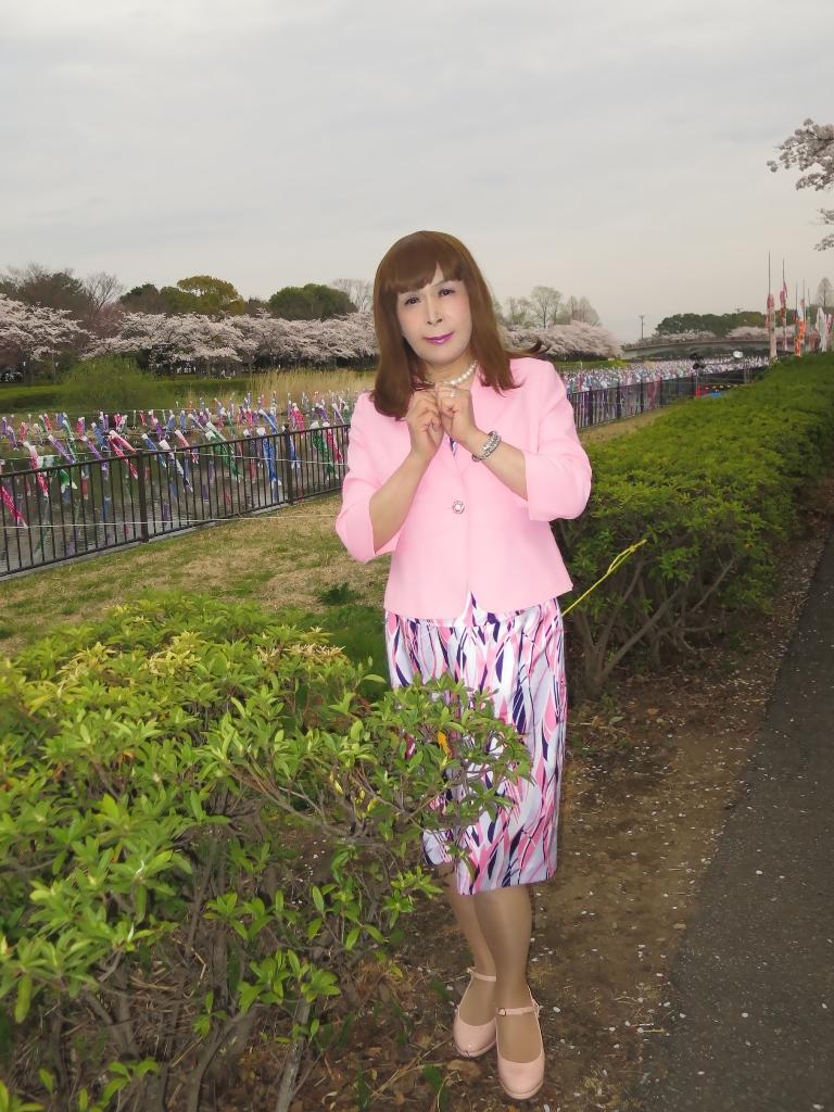 ピンクスーツ桜B(1)