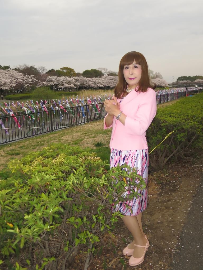 ピンクスーツ桜B(2)
