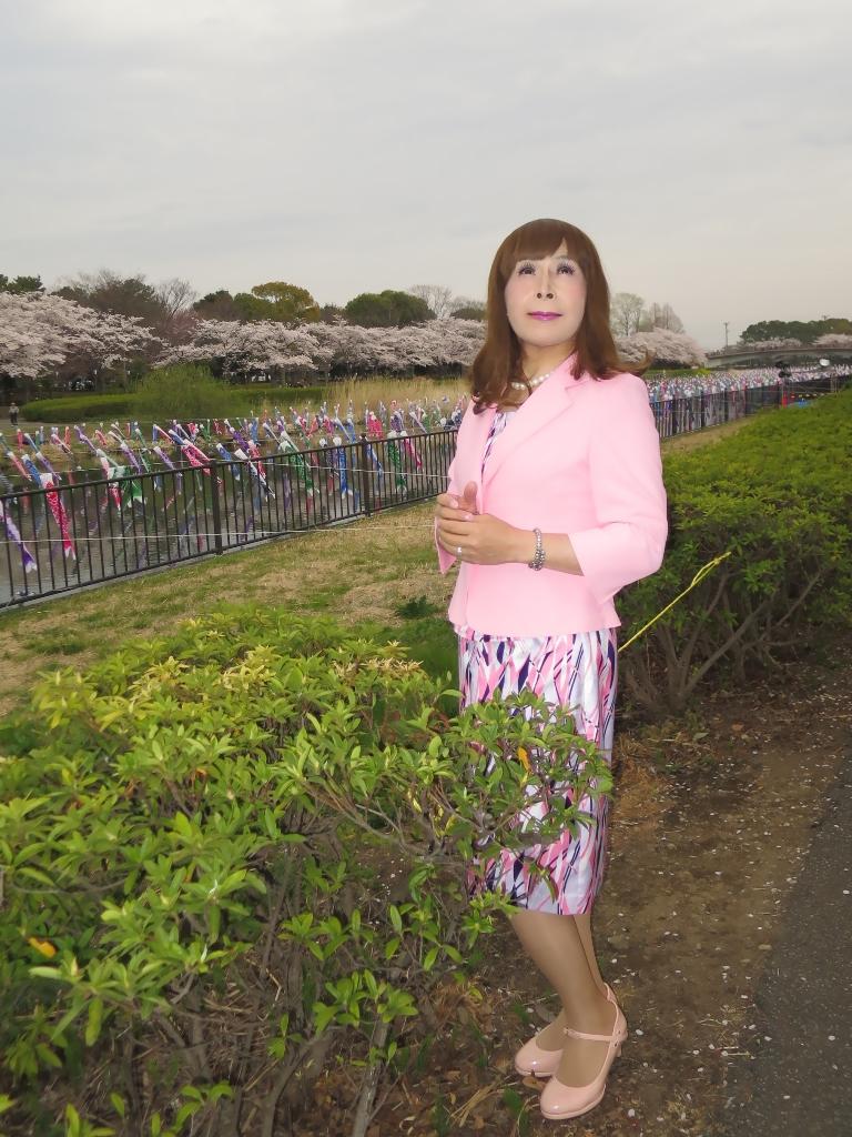 ピンクスーツ桜B(3)