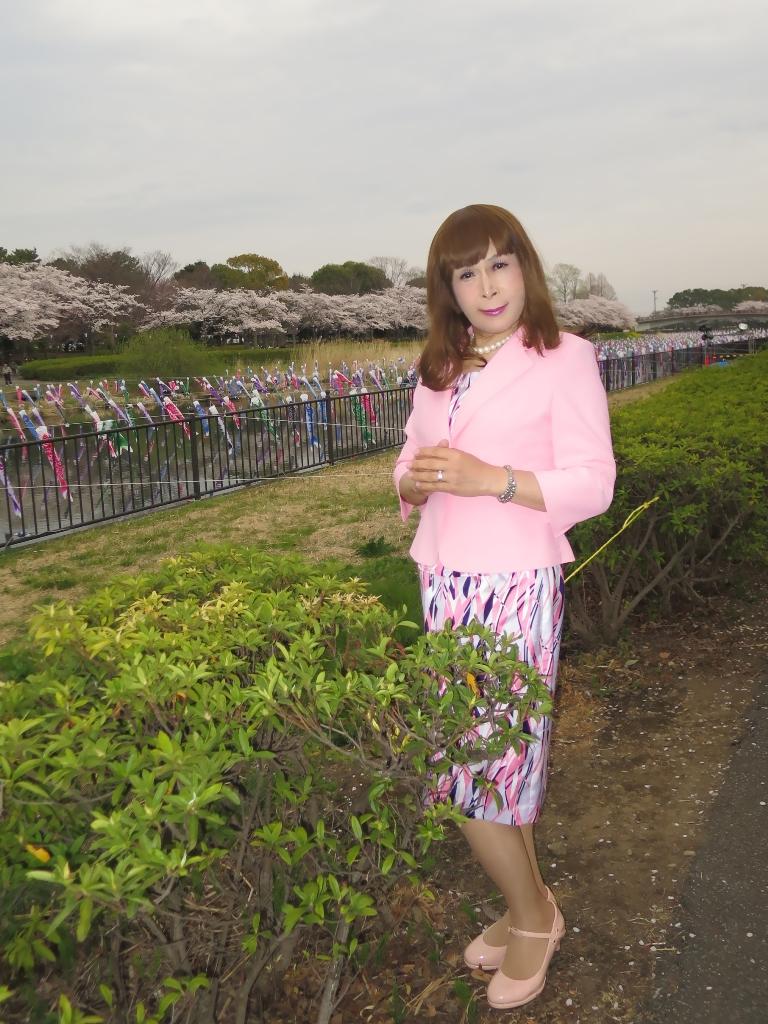 ピンクスーツ桜B(4)