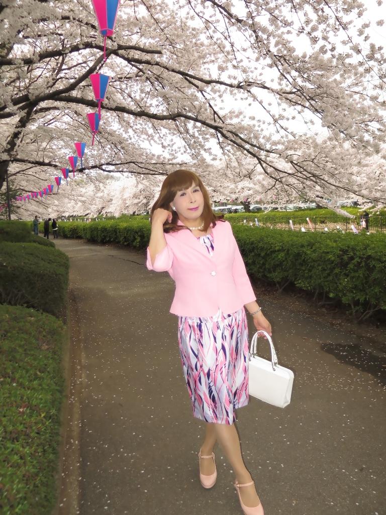 ピンクスーツ桜B(5)