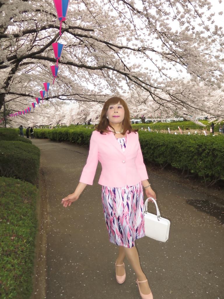 ピンクスーツ桜B(6)