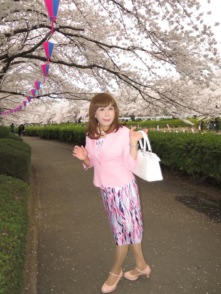 ピンクスーツ桜B(8)