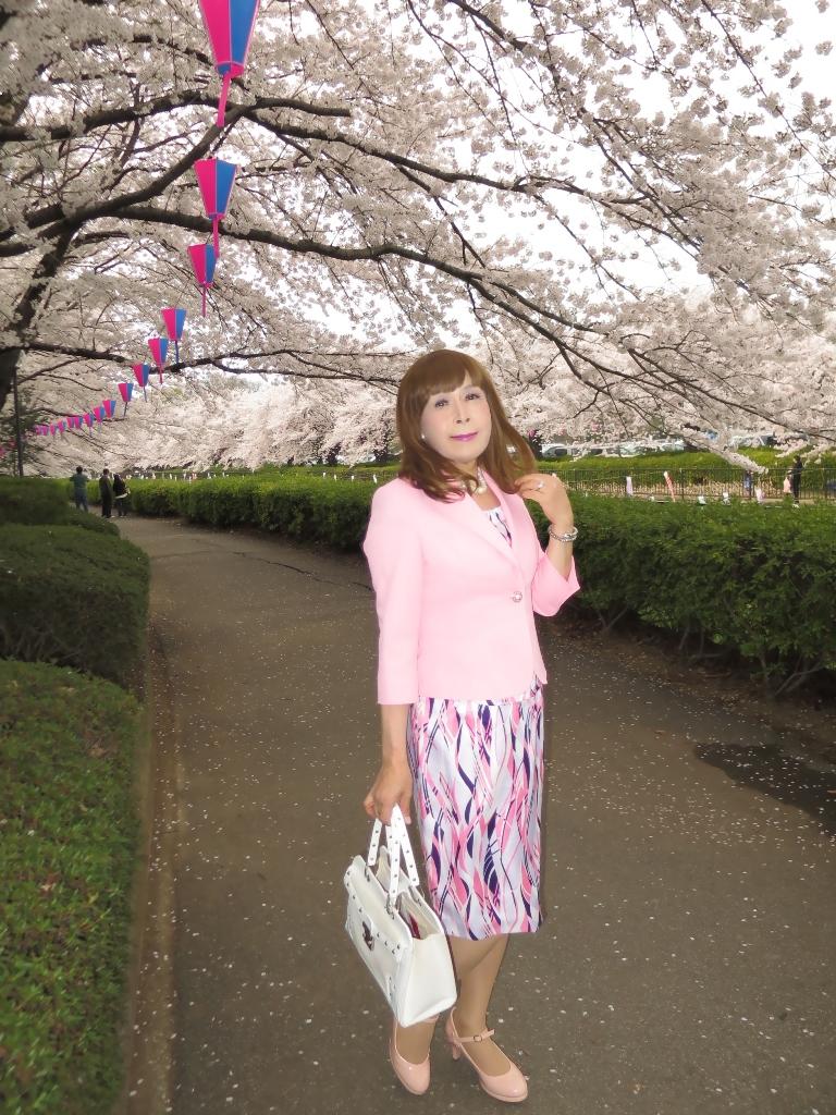 ピンクスーツ桜B(9)
