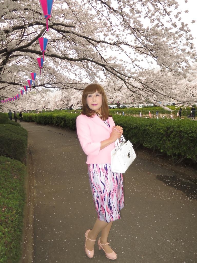 ピンクスーツ桜B(10)