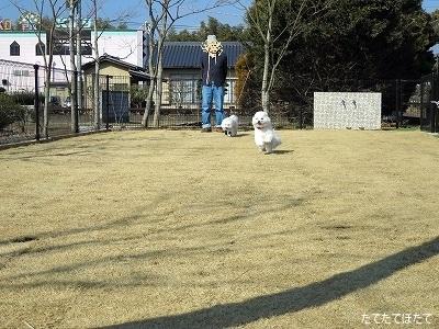 IMG_3486文字入り