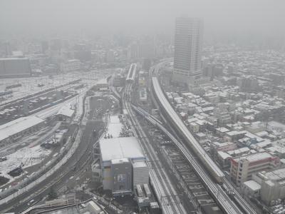 東京都心で今冬初の積雪