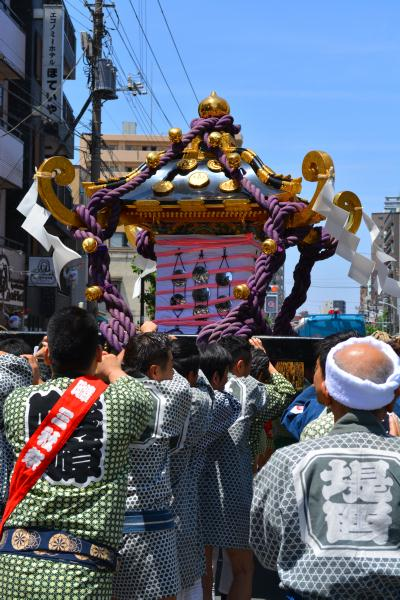 三社祭in山谷 2015の画像!