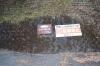 まかずの稲・力石への案内板