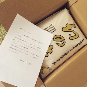 長野県飯山市_幻の米15kgの箱あり