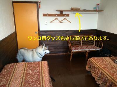 11_convert_20150509220159.jpg