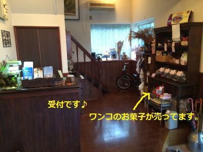 17_convert_20150509220524.jpg