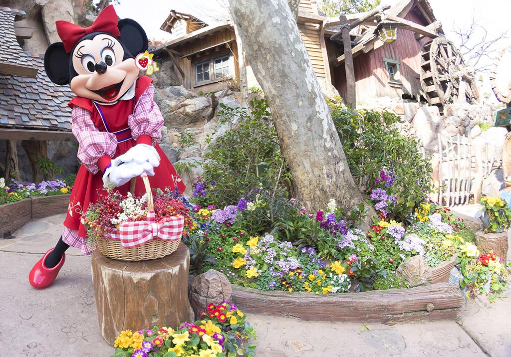 カゴとお花とベリーちゃん2