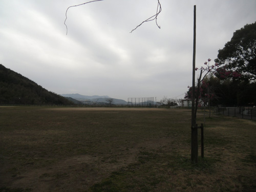 片淵公園に。