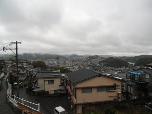 冷たい雨の日のお散歩になりました。3