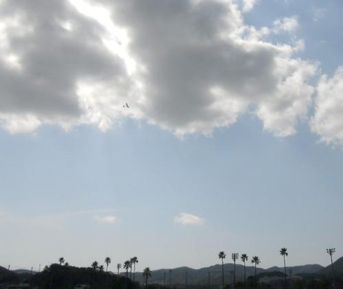 今日の飛行写真はコレだけで~す。