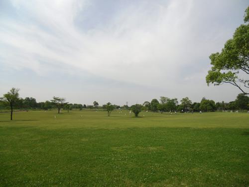 吉野ケ里公園ですが・・・、