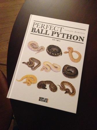 perfect ball python