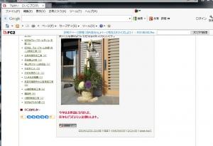ブログ50000記念