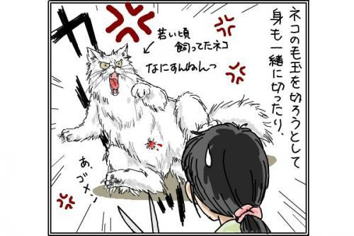 ネコのキズ_convert_20150127195211