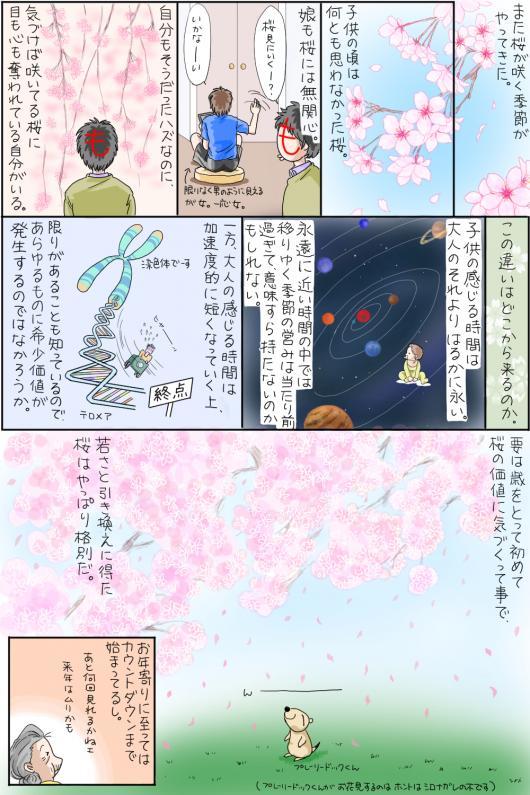 桜_convert_20150322194638