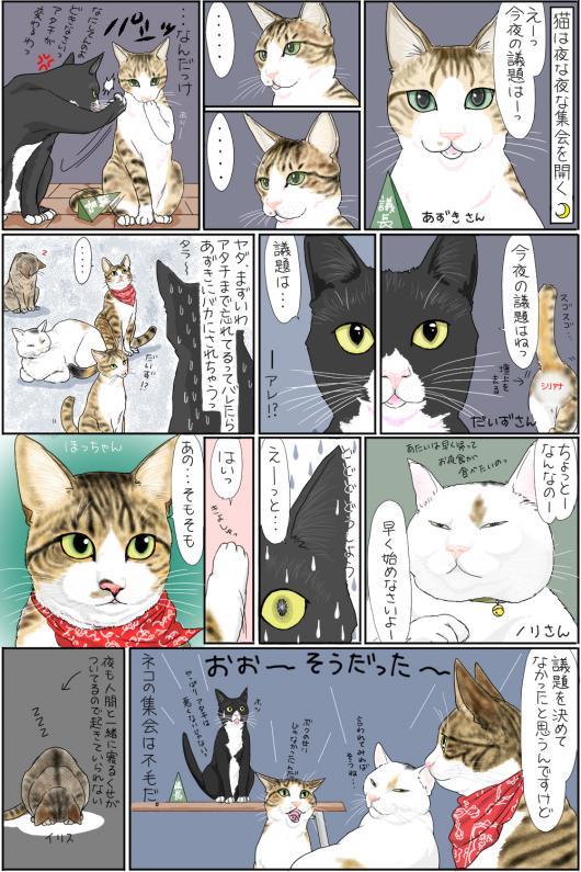 猫の集会_convert_20150413160740
