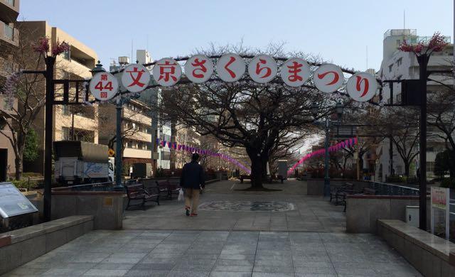 44文京区さくら