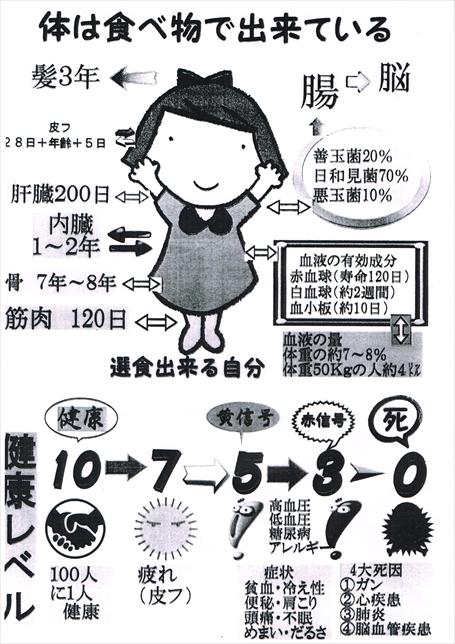 siryou20141228_R.jpg