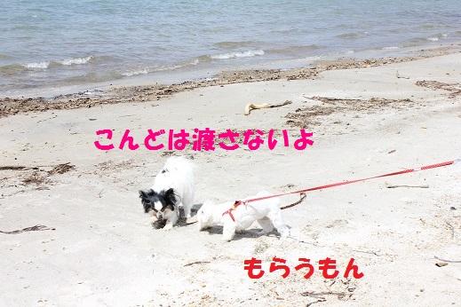 IMG_5428.jpg
