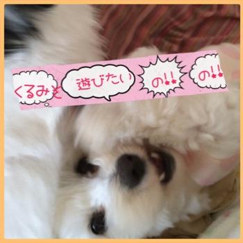 fc2blog_201504182240086d7.jpg
