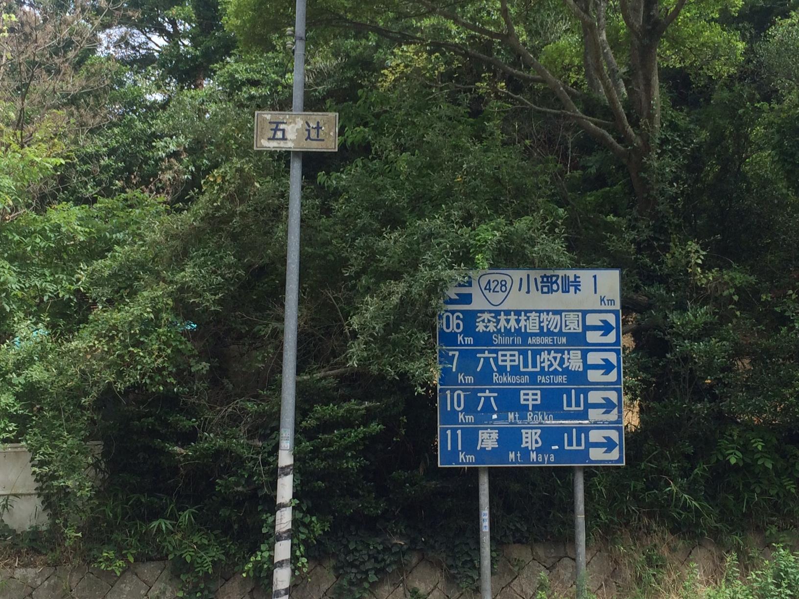 150703再度山03.JPG