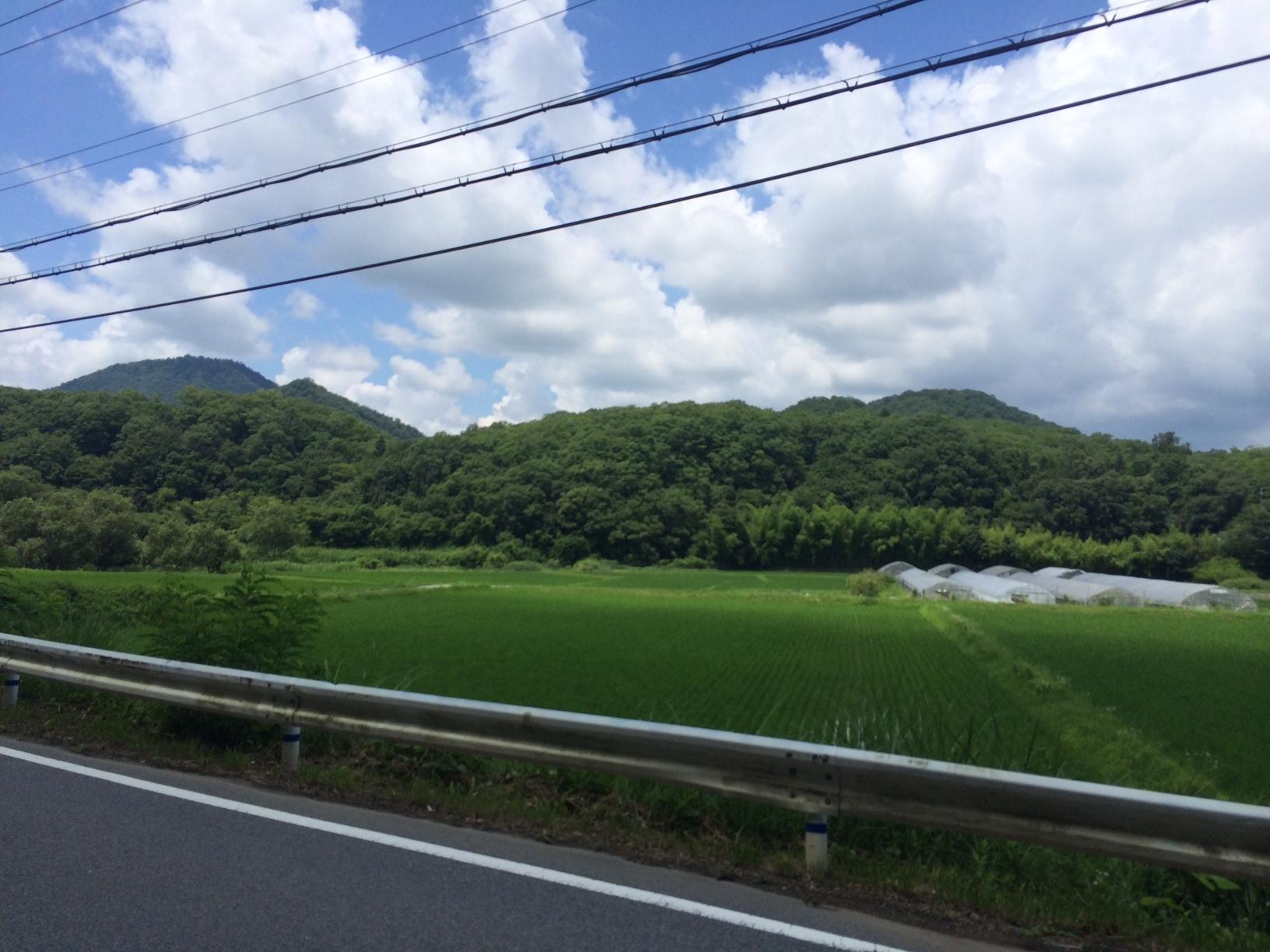 千丈寺湖05.JPG
