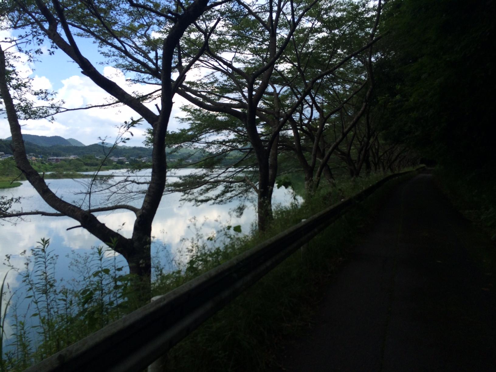 千丈寺湖19.JPG
