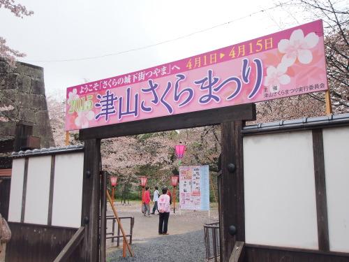 2015鶴山公園桜15