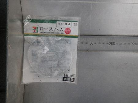 IMGP0019.jpg