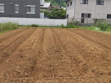 じゃが芋の後畝作り4