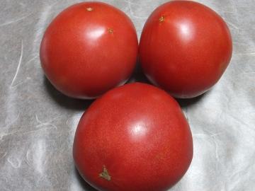 トマト青が赤へ10