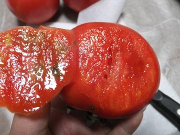 トマト青が赤へ11