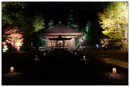 国宝白水阿弥陀堂 新緑の季節ライトアップ