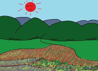 荒れる田畑