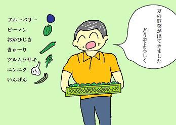 夏野菜が出てきたよ