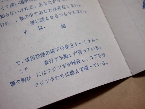 P4083855.jpg