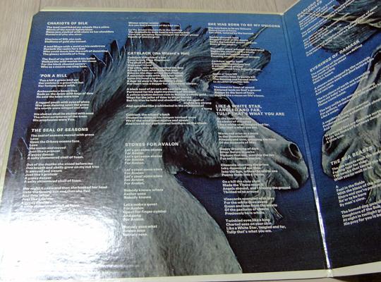 unicorn (30)