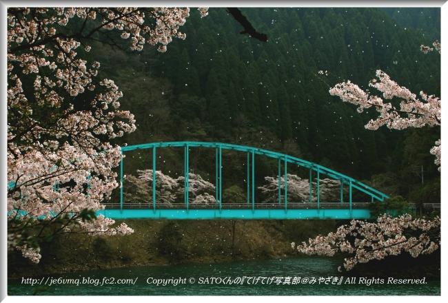 DSC_1875-1.jpg