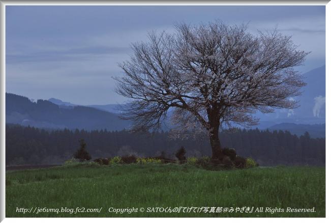 DSC_9112-2.jpg