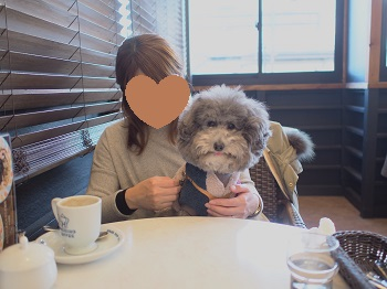 星乃珈琲20150131-7