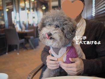 星乃珈琲20150131-10