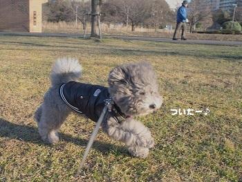 川さんぽ20150201