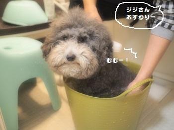 ばけつ風呂20150214-6