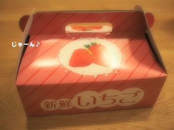 いちご直売2